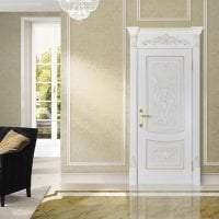 яркие двери в дизайне с оттенком темного фото