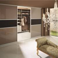 большой шкаф в стиле прихожей фото