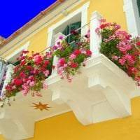 яркие цветы в интерьере балкона на перемычках дизайн фото