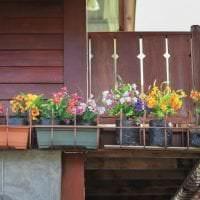 шикарные цветы в интерьере балкона на этажерках дизайн картинка