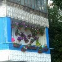 красивые цветы на балконе на перемычках пример картинка