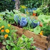 красивый ландшафтный декор сада в английском стиле с цветами фото