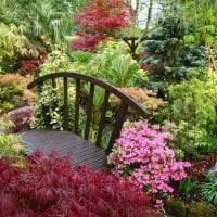 необычный ландшафтный декор дачного участка в английском стиле с цветами картинка