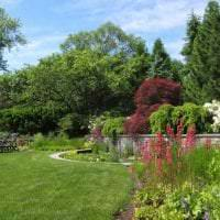 красивый ландшафтный декор сада в английском стиле с цветами картинка