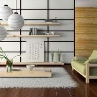 яркий интерьере прихожей в японском стиле фото