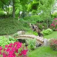 необычный ландшафтный дизайн дачного участка в английском стиле с цветами картинка