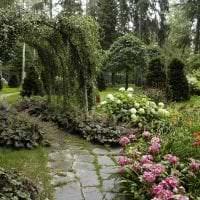 красивый ландшафтный декор дачного участка в английском стиле с деревьями фото