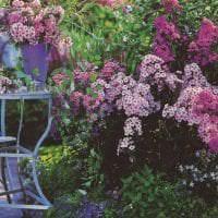 шикарный ландшафтный дизайн двора в английском стиле с цветами картинка