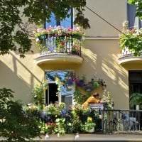 яркие цветы в интерьере балкона на этажерках пример картинка