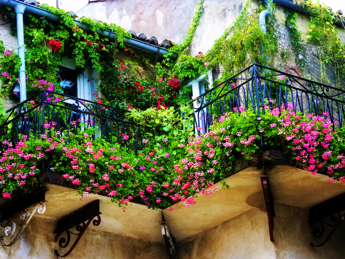 шикарные цветы на балконе на этажерках интерьер
