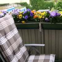 шикарные цветы на балконе на полках интерьер фото