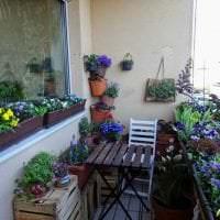 красивые цветы в интерьере балкона на перемычках интерьер картинка