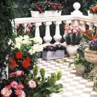 красивые цветы на балконе на перемычках дизайн картинка