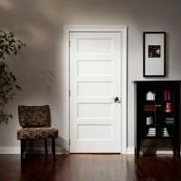 белые двери в дизайне с оттенком шоколадного фото