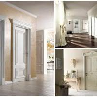 яркие двери в дизайне с оттенком коричневого фото