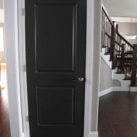 яркие двери в интерьере прихожей картинка