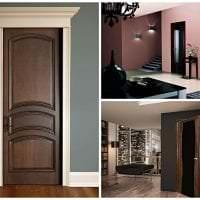 темные двери в декоре коридора из сосны картинка