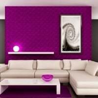 светлый стиль коридора в цвете фуксия фото