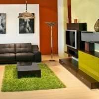 приятный терракотовый цвет в интерьере гостиной фото