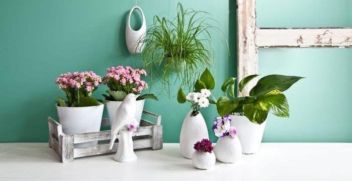 красивый весенний декор в стиле коридора