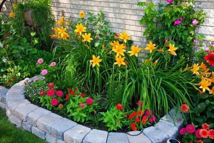 небольшие яркие цветы в ландшафтном дизайне загородного дома