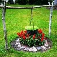 маленькие необычные цветы в ландшафтном дизайне загородного дома фото