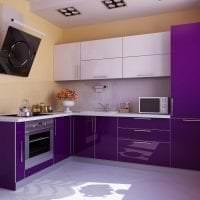 необычный стиль кухни в фиолетовом оттенке картинка