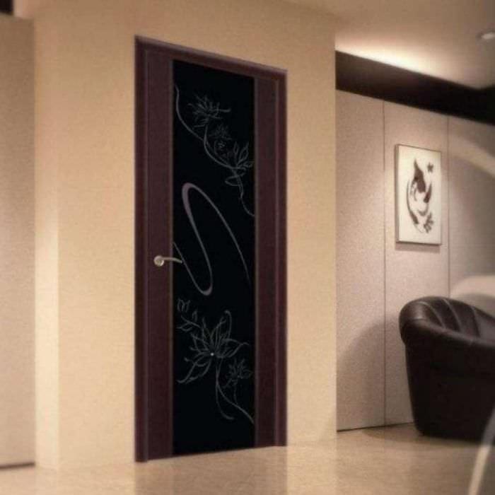 Двери цвета венге фото