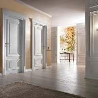 светлые двери в декоре кухни картинка