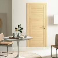 темные двери в дизайне дома фото
