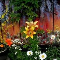 красивое оформление декора дачного участка цветами фото