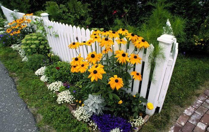 Фото дачных участков с цветами своими руками