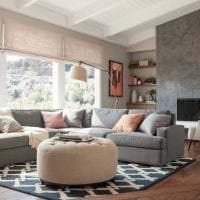 сочетание светлого серого в интерьере квартиры с другими цветами фото