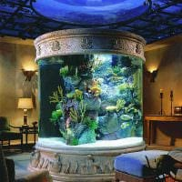 вариант необычного декорирования аквариума фото