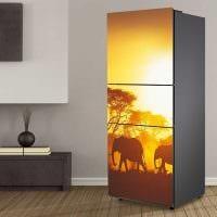 идея яркого оформления холодильника фото