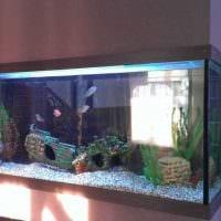 вариант яркого украшения домашнего аквариума картинка