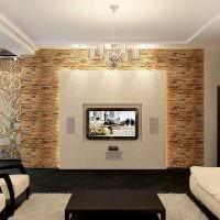 вариант необычного декоративного камня в стиле комнаты фото