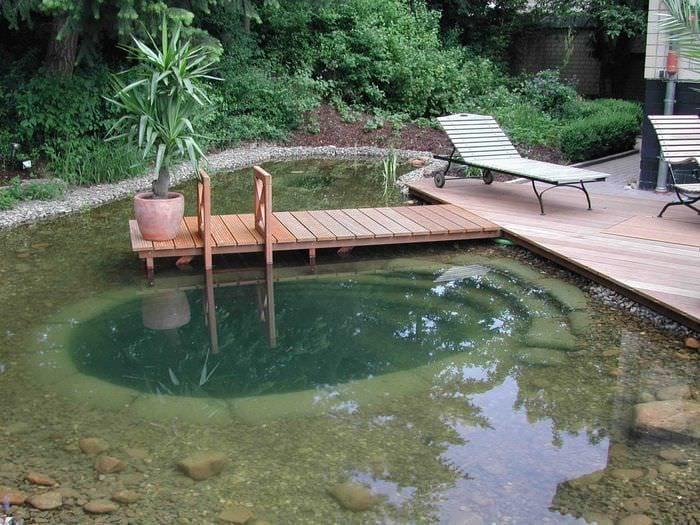 идея оригинального дизайна небольшого бассейна