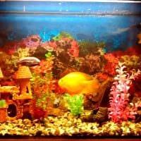 вариант красивого украшения аквариума фото
