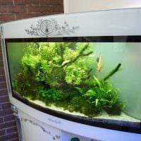 идея оригинального оформления домашнего аквариума картинка