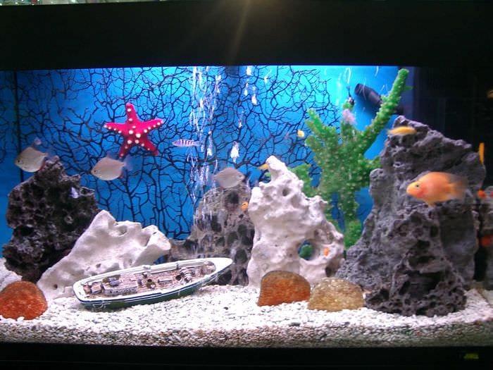 Декор в аквариуме своими руками фото 721