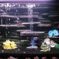 вариант яркого оформления домашнего аквариума фото