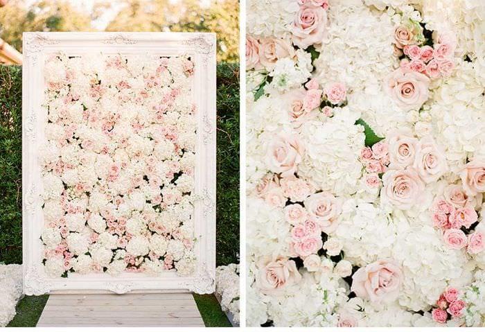 цветы на балконе солнечная сторона фото и названия