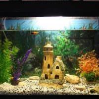вариант яркого декорирования домашнего аквариума картинка