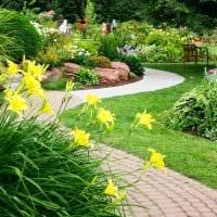 пример яркого ландшафтного дизайна частного двора фото