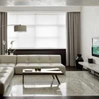 пример необычного декора гостиной комнаты в стиле минимализм фото