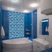 вариант необычного дизайна большой ванной картинка