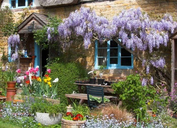 идея яркого декорирования двора частного дома
