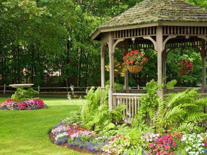 Советы - сайт для садоводов 6