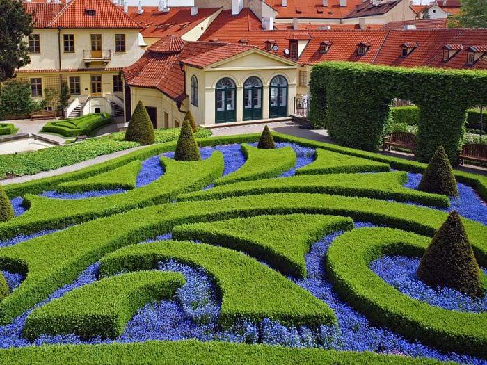 идея использования красивых растений в ландшафтном дизайне дачи